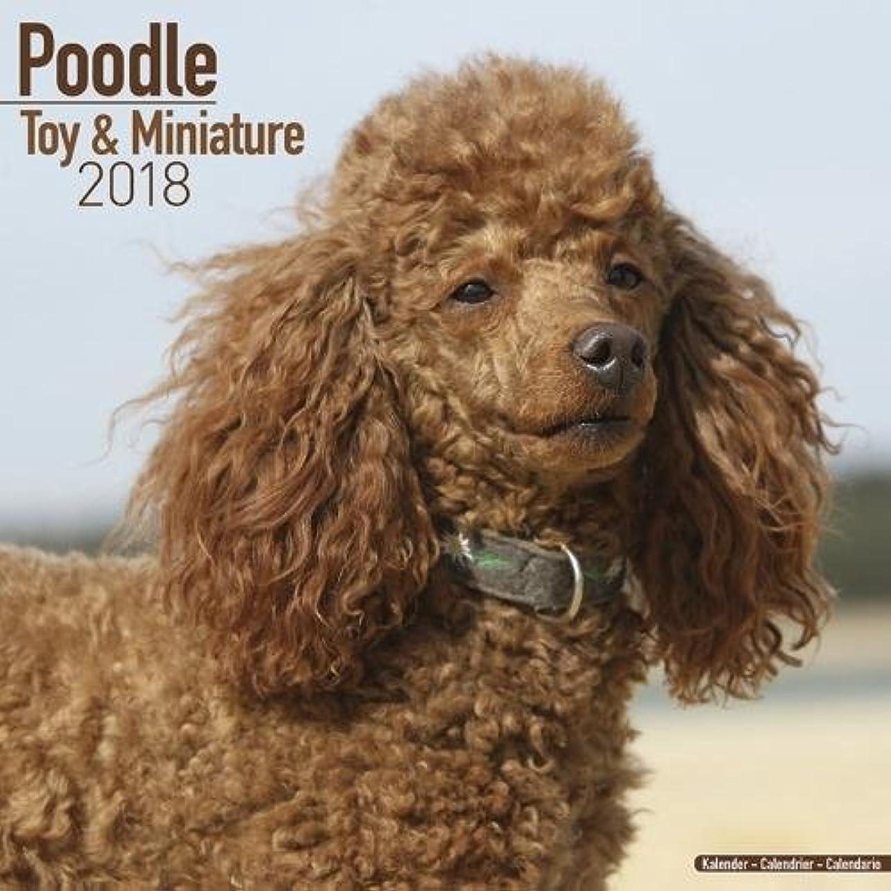 ポジティブ株式会社倒錯Poodle Toy & Miniature Calendar 2018