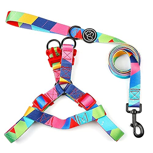 LUBINGT Dog Vest Rope Series Dog Harness and Leash Set No Pull Vest Harness Large Dog Rope Teddy Decoration Gift Pet Accessories (Color : Thyssen, Size : S)