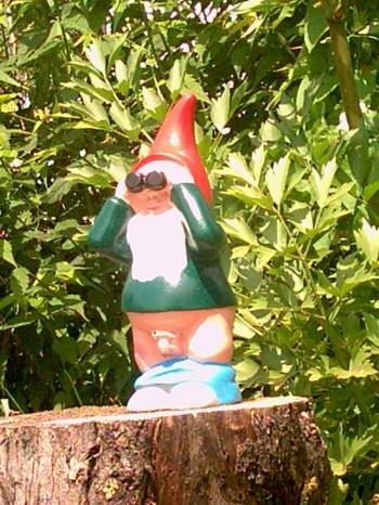 witzig Gartenzwerg der Spanner ca. 30cm terracotta , Zwerg als Geschenk Gartendeko