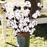 gtidea 3 pack 29 inches natural dried cotton stems decor farmhouse artificial flower vase filler fall floral arrangement diy home party decor