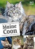 Maine Coon - Comportement, soins, sociabilisation