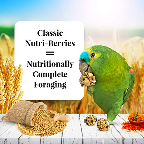 LAFEBER'S Classic Nutri-Berries Pet Bird Food, Made with Non-GMO and Human-Grade Ingredients, for Parrots, 3.25 lbs