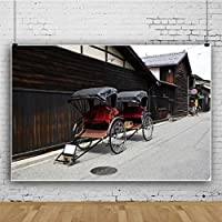 Qinunipoto ビニール 3x2m 日本の伝統的な人力車 観光客 きれいな通り 写真の背景 写真撮影の背景 背景布 背景幕 ポートレート 写真館 自宅用 商業用 旅行 装飾用 無反射布 スタジオ ブース小道具