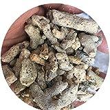 TELLW True Stone Ordinary Coral Sand 1-4 cm Coral Stone Bone Aquarium Filter Material Acuario Paisajismo Fondo Arena