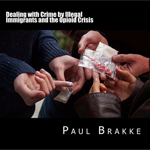 Dealing with Crime by Illegal Immigrants and the Opioid Crisis audiobook cover art