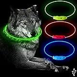 B4P LED Leuchthalsband für Hunde USB Wiederaufladbar...