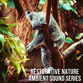 Restorative Nature Ambient Sound Series: Yoga Meditation Tracks 2021
