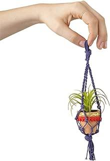 Natural Life Purple Mini Macramé Faux Succulent