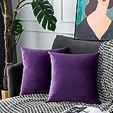 UPOPO Cojines Sofa Terciopelo Funda Decorativos Cojin Salon Cama para Super Suave Fundas Dormitorio Habitacion 2 Piezas de Color Sólido De Cojín Suave De Estar Cremalleras 50 X 50 cm Morado Oscuro