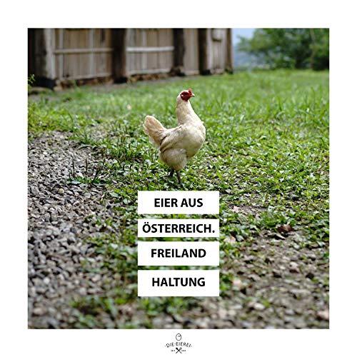 PROTEINVITAL Pures Hühner Eiweisspulver 100% natürlich aus Österreich 1000g Bodenhaltung – Neutral & ohne Kohlenhydrate – Proteinpulver zum backen kochen aufschlagen oder als shake zusatz – Laktosefrei Glutenfrei Fettfrei Süßstofffrei - 6