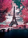 DIY 5D Pintura Diamante por Kit, Torre Eiffel Diamond Painting Taladro Completo Diamante Bordado Dotz Kit Home Wall Decor - Rosa París 30x40 cm