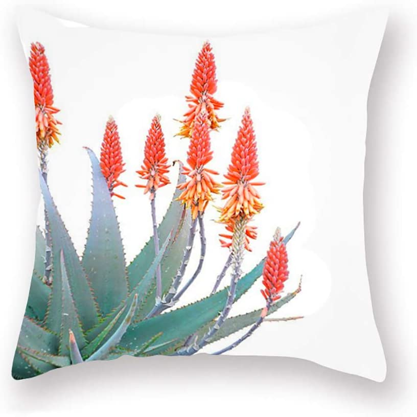 Fukeen Summer Series Standard Pillow Covers Plants Cactus Flower Home Couch Decor Cushion Case Super Soft 18x18 Inches Pillow Sham (Cactus Flower)