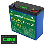 TalentCell 2000 Cycles Rechargeable 12V 24Ah 288Wh Lithium Iron Phosphate (LiFePO4) Deep Cycle...