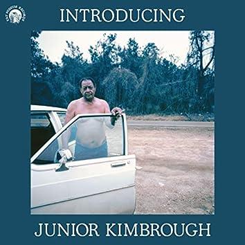 Introducing Junior Kimbrough