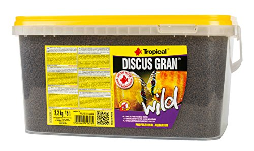 Tropical Discus Wild, 1er Pack (1x 5l)