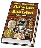 Aratta und Baktrien - Antike Königreiche: Aratta und Baktrien - Antike Königreiche (German Edition)
