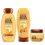 Garnier Hair Care Whole Blends