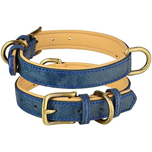 Cuello De Perro De Cuero Ajustable Doble D-Ring Dog Control Pequeño Medio Medio Perros Grandes Comfortable (Color : Blue, Size : XS 22 28CM)
