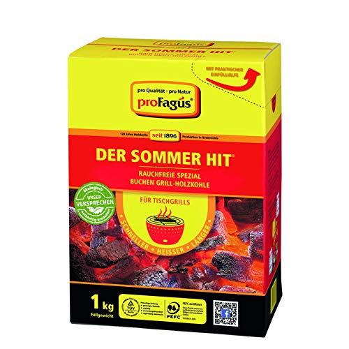 ProFagus Sommerhit Grill-Kohle für Tischgrill mit Einfüllhilfe 1000g