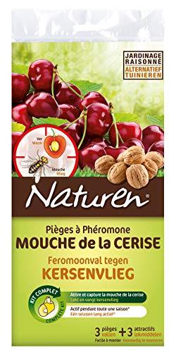 NATUREN Pièges à Phéromone Mouche de la Cerise, Vert