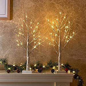 🎄Appearance🎄: The Pre-lit white birch tree is attractive and beautiful. It is covered with adhesive tape, artificial bark and hand-painted bark texture. Overall height 2FT with 3.94inch x 3.94inch base and 24 led warm white lights. 🎄Battery Powered🎄:...
