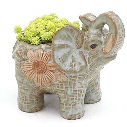 Ceramic pot elephant Cacti Succulent Plant Pot Flower Planter Mini Garden