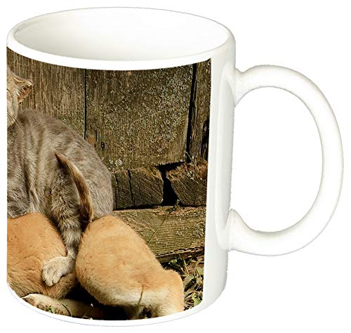 MasTazas Perros Y Gatos Cachorros Dogs and Cats Puppies and Kittens B Tasse Mug