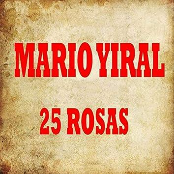 25 Rosas