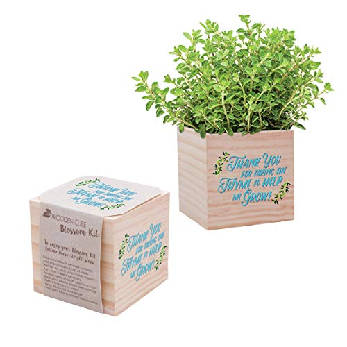 Cheersville Desk Accessory for The Office - Thyme Plant Seed Packet, Peat...