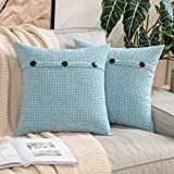 MIULEE Pack of 2 Chenille Rustic Farmhouse Decorative Throw Pillow Covers Cushion Case Triple Button Vintage Farmhouse Pillowcase for Sofa Living Room Bedroom 16X16 Inch Light Blue