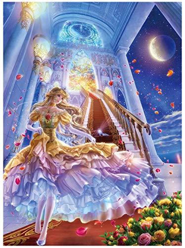 SKYTY Puzzle 1500 Piezas-Zapato de Cristal niña-Puzzle de