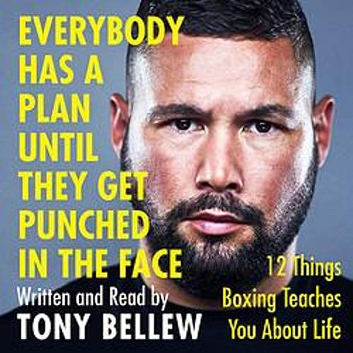 Everybody Has a Plan Until They Get Punched in the Face cover art