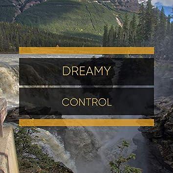 # Dreamy Control