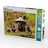 CALVENDO Puzzle Mit Elfen durch das Jahr 1000 Teile Lege-Größe 64 x 48 cm Foto-Puzzle Bild von...