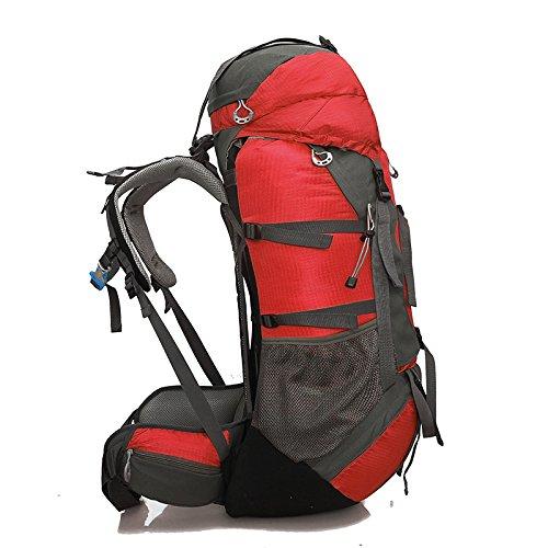 Local Lion borsa zaino unisex da spalla outdoor campeggio escursionismo viaggio 65L rosso