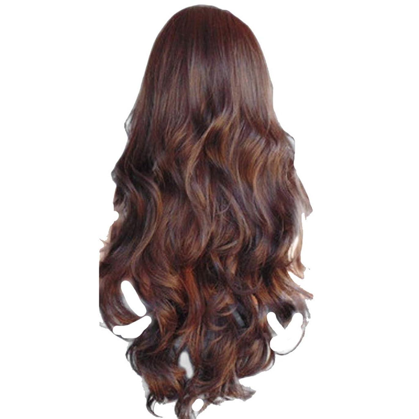 フォームエゴイズムどのくらいの頻度で女性の長いウェーブのかかった巻き毛のファッションセクシーなかつらはヘアネットをバラ