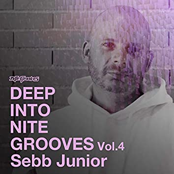 Deep Into Nite Grooves, Vol. 4