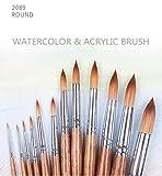 WOOAI 2089R - Pincel sintético para acuarela y dibujo acrílico (mango de madera de roble)