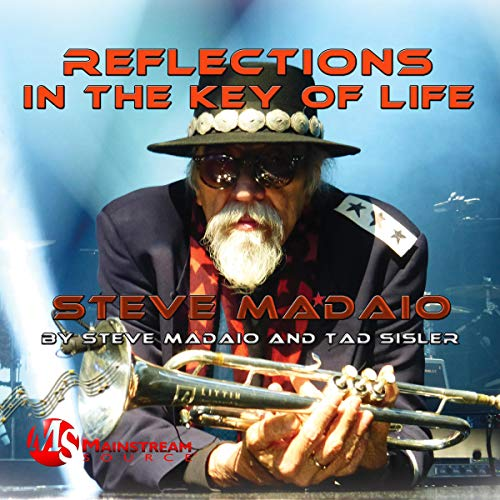 Reflections in the Key of Life: The Autobiography of Steve Madaio audiobook cover art