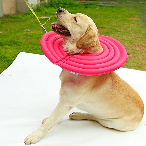 Cuello de recuperación de liheyin–Funda protectora de cuello Protección de la Cicatrización Smart cuello para perro gato mascota