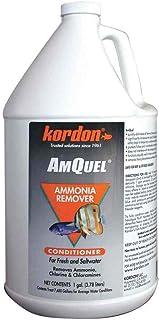 Kordon AmQuel Ammonia/Chloramine Remover - 1gal