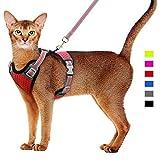 🐕 SUGGESTION】 --- Veuillez mesurer soigneusement la taille de la poitrine de votre animal avant de choisir le harnais pour chat. (Supposons que la circonférence de votre chat / chien soit proche de sa fourrure, puis ajoutez 2 à 3 cm à cette mesure po...