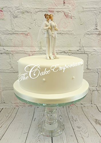 Wedding Cake Topper Same Sex Couple Gay/Lesbian Resin Ornament Ladies Suit