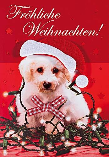 Weihnachtskarte Lifestyle - Hund, Schleife - 11,6 x 16,6 cm