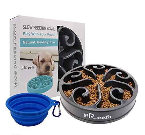 Alimentatore lento, ciotola ecologica per cani, inclusa ciotola da viaggio