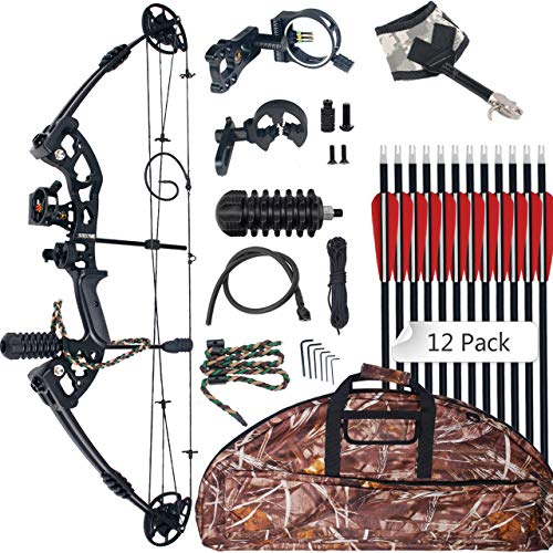 SinoArt Compound Bow 30-55lbs 24'-29.5' Archery Hunting Equipment Max Speed 310fps with Accessories Right Handed