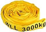 Braun 30041RS - Correa transportadora (poliéster, resistencia: 3000 kg, 2 m), color amari...