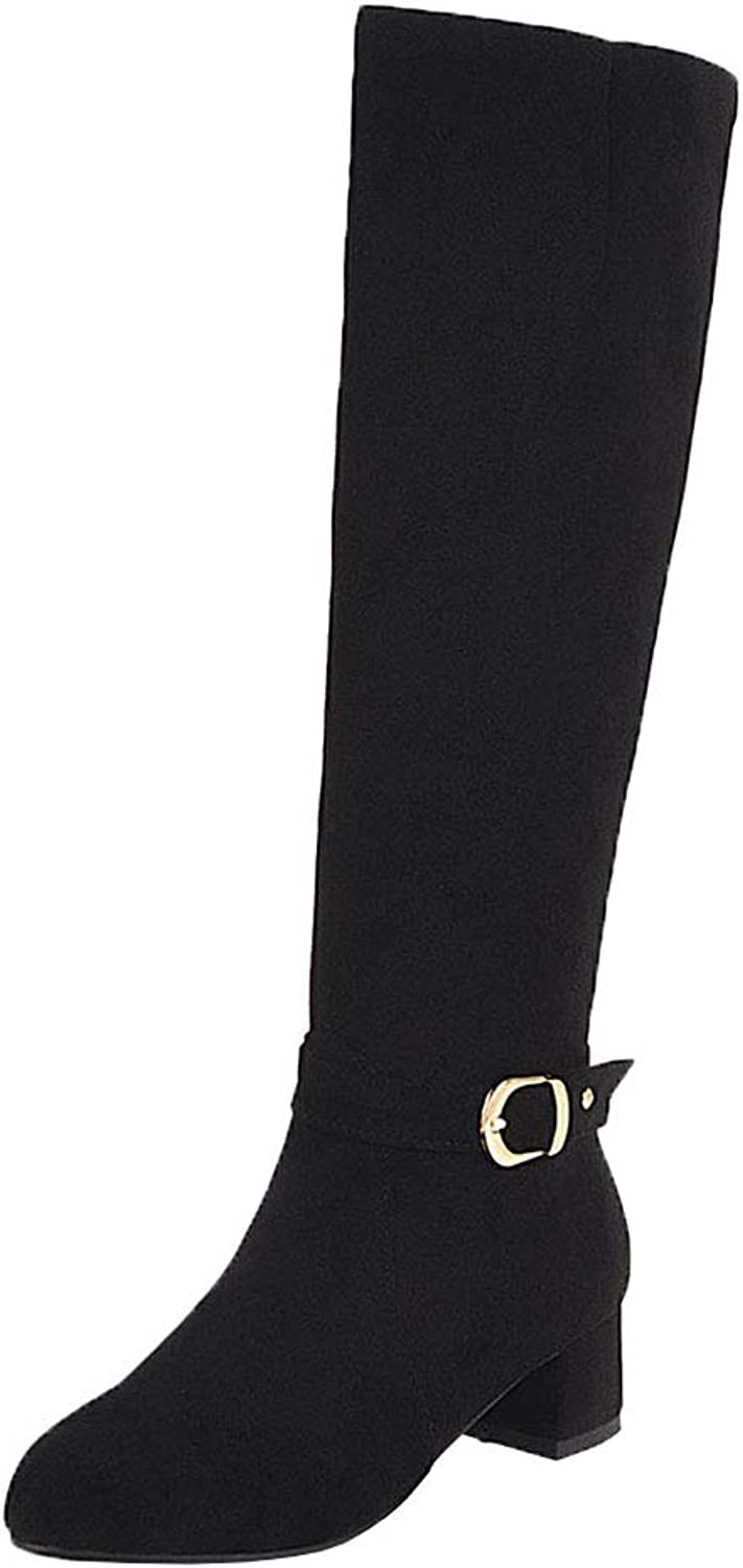 AicciAizzi Women Zip Long Boots Mid Heel