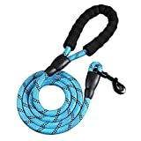 <span class='highlight'><span class='highlight'>LISRUI</span></span> Rope Dog Lead for Medium to Large Dogs Strong with Comfortable Padded Handle and Highly Reflective Threads, blue, 200x0.8CM