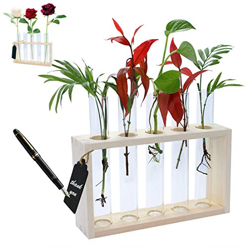DIKOO Wall Hanging Mounted Glass Planter Vase, Modern Flower Bud Vase in Wood Stand Rack Tabletop Terrarium with 5 Test Tube for Propagation Hydroponics Plants Home Garden Office Hotel Decoration